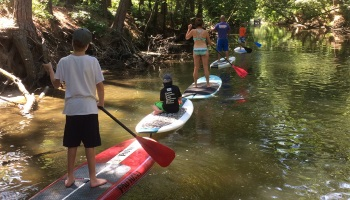 Delaware Bay Paddleboarding Tour